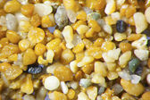 Microphotography of sand grains — Stock Photo