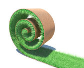 Rollo de un pasto verde fresco — Foto de Stock