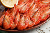 Appetizing shrimp platter — Stock Photo