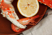 Crab claw grasping a shrimp — Stock Photo