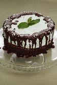 Whole cake of mint and chocolate - stock image — Stok fotoğraf