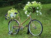 Vintage garden bicycle — Stock Photo
