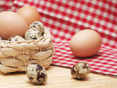 Quail and hen eggs — Stock Photo