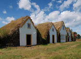 Icelandic traditional turf houses — Stock Photo