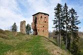 Las ruinas del antiguo castillo — Foto de Stock
