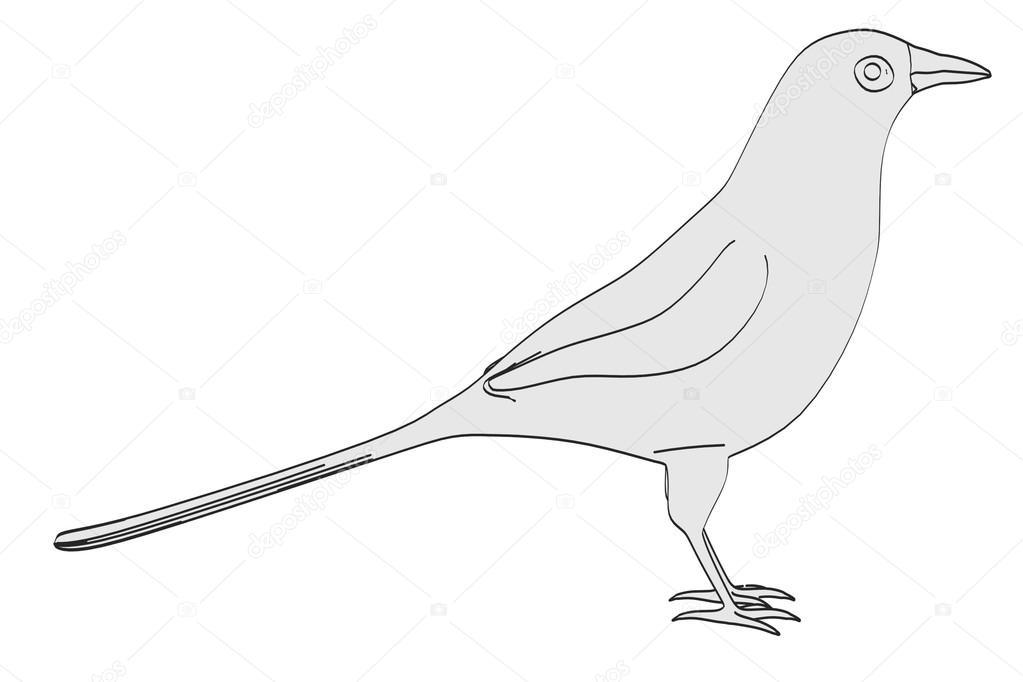 Cartoons Birds Images Cartoon Image of Magpie Bird