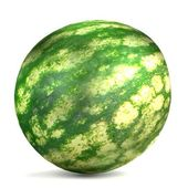 Realistic 3d render of melon — Stock Photo