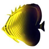 Realistic 3d render of tropical fish — Stockfoto