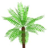 Realistic 3d render of palm tree — Stock Photo