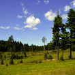Stock Photo: Landscape - Slovak Paradise