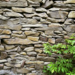 Oil painting stone wall — Stock Photo