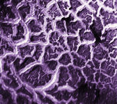 Painted abstract texture — Stockfoto