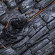 Stock Photo: Charred wood with bulges