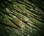 Old wrinkled sandstone — Stock fotografie