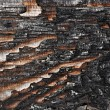 Charred wood board — Stock Photo