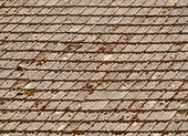 Moss covered roof — Stock Photo
