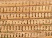 Old wood folding rule — Foto Stock