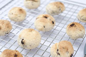 Home made cookies — Stock Photo