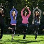 Meditation yoga pose — Stock Photo #50576063