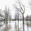 Flooded park underwater in the Chicago area — Stock Photo #50617415