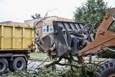 Truck removing broken fallen branches — Stock Photo