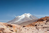 HIgh Andean Landscape — Stock Photo