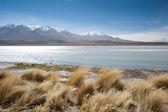 High Andes Lake, Bolivia — Stock Photo