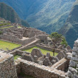 Manchu Picchu — Stock Photo