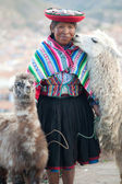Woman with her lamas - Cusco, Peru — Stock Photo