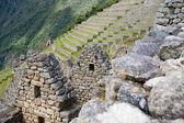 Picchu manchu — Foto Stock