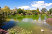 Kuirau Park, Rotorua, New Zealand — Stock Photo