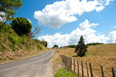 Countryside Road - New Zealand — Stock Photo