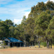 Rural Homestead - Australia — Stock Photo #12868540