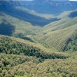 Stock Photo: Blue Mountains - Australia