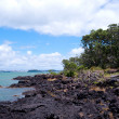 Rangitoto Island New Zealand — Stock Photo #12870722