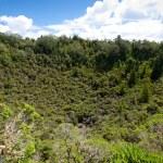 Rangitoto Island New Zealand — Stock Photo #12870834