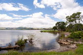 Lake Rotorua, New Zealand — Stock Photo