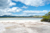 Volcanic Lake Rotorua - New Zealand. — Stock Photo