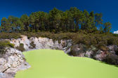 Devil's Bath, Wai-O-Tapu Thermal Wonderland, Rotorua, New Zealan — Stock Photo