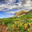 North-west coast of Tenerife near Punto Teno Lighthouse, Canaria - Stock Photo