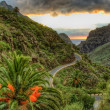 Palms and serpentine near Masca village with mountains, Tenerife - Stock Photo