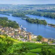 Ruedelsheim, Hessen, Germany - Stock Photo