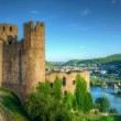 Stock Photo: Burg (Fortress) Ehrenfels, Ruedelsheim, Hessen, Germany