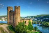 Burg (Fortress) Ehrenfels, Ruedelsheim, Hessen, Germany — Stockfoto