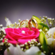 Stock Photo: Golden wedding ring with flowers close-up, Sergiev Posad, Moscow