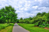 Alley in Aueweiher Park in Fulda, Hessen, Germany — Stock Photo