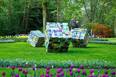 Ergernis en Gemak (Big colorful cubes) in Keukenhof park in Holl — Stock Photo