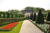 Garden with bushes, red and white flowers and trees in Keukenhof — Stock Photo