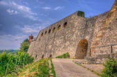 Stone Wall of Marienberg Fortress (Castle) through grapes to Wur — Foto de Stock