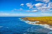 North-west coast of Tenerife near Punto Teno Lighthouse, Canaria — Stock Photo